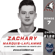 Zachary Marquis-Laflamme