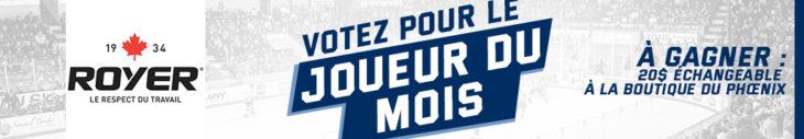 Royer-Bannière web